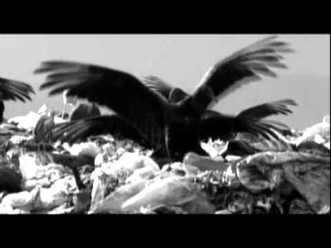 death-in-june-rhine-atrocity-odrek-gonne