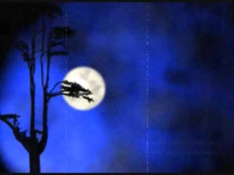 月亮圆 山脚下男孩