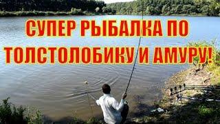 Супер рыбалка по толстолобику и амуру в начале августа / Монтаж снасти ''Убийца толстолоба''