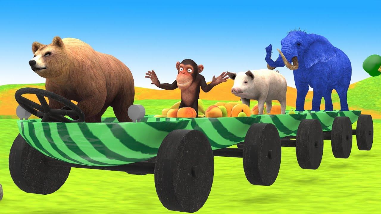पशु भालू बंदर तरबूज फल ट्रेन Hindi Kahaniya नैतिक कहानी Panchatantra Stories 3d Hindi Comedy Stories