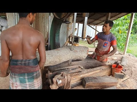 Mahogany Wood With Skilled Workers in New Saw Mill/Mahogany Wood Cutting 4k Video
