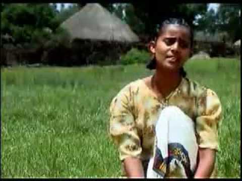 Somalian Traditional Music