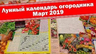 Благоприятные дни Март 2019. Когда посеять цветы и овощи? Лунный посевной календарь огородника