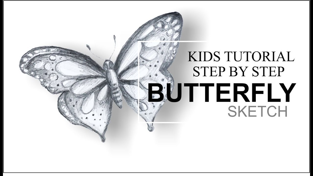 How to draw butterfly ii step by step ii pencil sketch ii kids tutorial