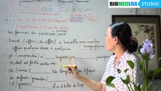 Bài 70: Bài tập các dạng quá khứ phân từ - Les formes du participe passé (exercices)