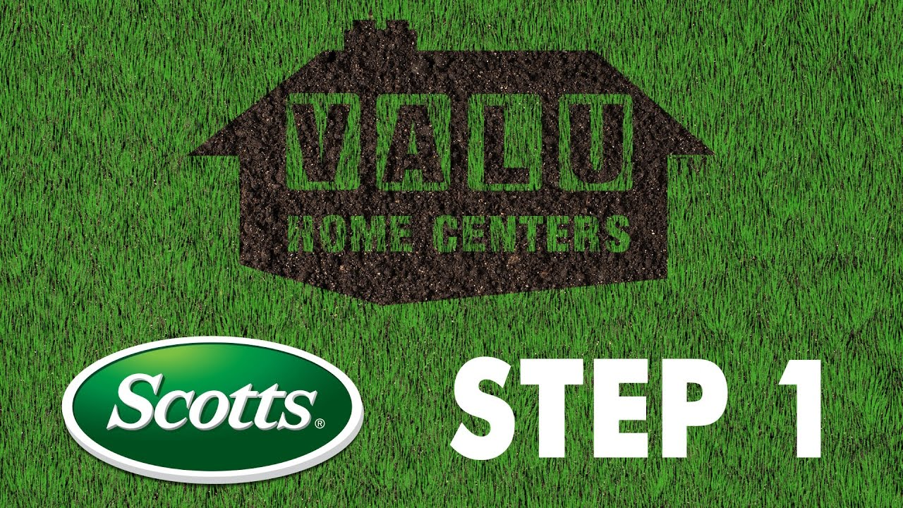 Scotts 4 Step Lawn Care 1 Turfbuilder With Halts