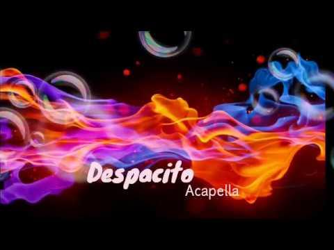 Despacito Acapella/Only Vocals