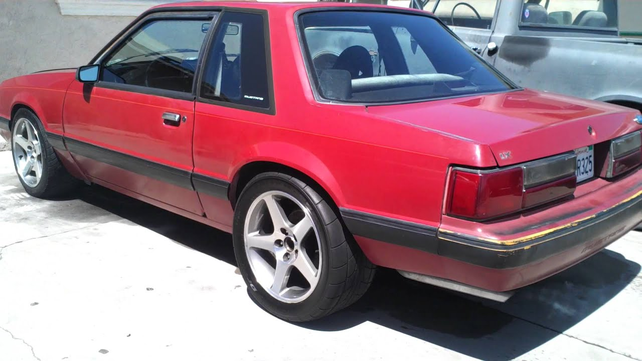 Camed 88 notchback mustang idle youtube
