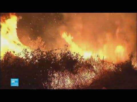 عشرات القتلى في حرائق في البرتغال وإسبانيا  - نشر قبل 3 ساعة