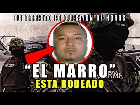 """""""EL MARRO"""" sin escapatoria, está rodeado"""