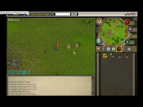 Runescape How To Hunt: Box Traps