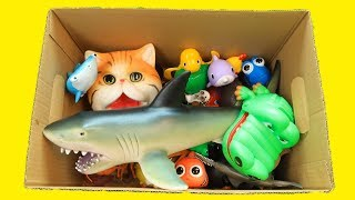 Educational video for kids learning the names and colors of wild animals with various animal toys