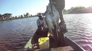 pesca robalo no rio mucuri -ba 2