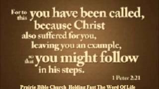 1 Peter 2: 21-25 (3/2/14)