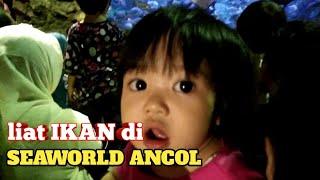 Download lagu Liat ikan di seaworld Ancol..