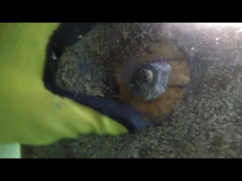 Underwater hull and prop cleaning, llc. Inspection of Anodes and Props