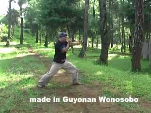 Guyonan Wonosobo_Silat Asli Wonosobo.flv