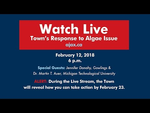Town's Response to Algae Issue