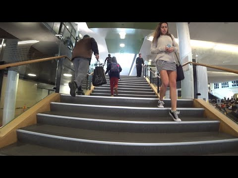 VICTORIA UNIVERSITY Campus TOUR -- Wellington 🇳🇿