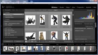359 Filtrar fotos que solo tengan una palabra clave en concreto (y ninguna otra) en Lightroom