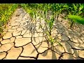 Mineral depletion in the Earths soils & how it effects your health