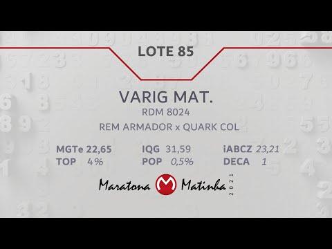 LOTE 85 Maratona Matinha