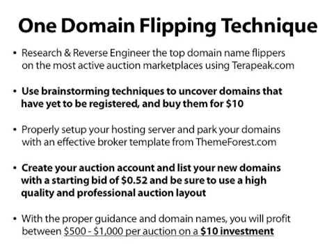 millionairesociety com Domain Flipping By The Millionaire Society