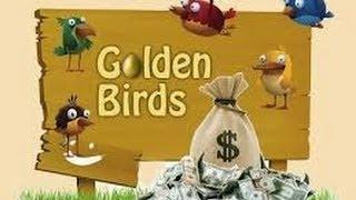 Золотые птицы! Наверное лучший проект в котором можно заработать.