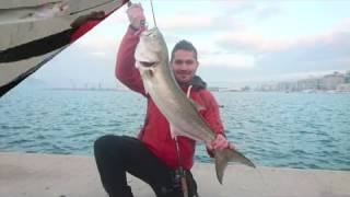 Spinning BlueFish 6,400 kg in Volos