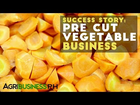 fruit and vegetable business plan