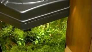 Светодиодное освещение аквариума(Светодиодное освещение аквариума 30 литров. Подробнее http://woodorama.ru/vit_aqa.html., 2013-01-20T21:47:00.000Z)