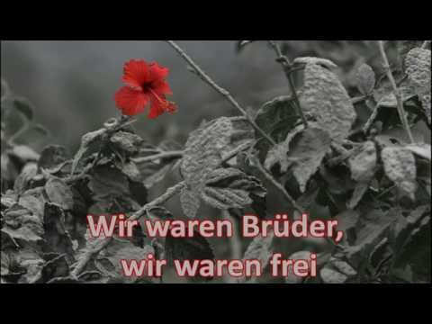 VARG - Ascheregen (Lyrics Video)