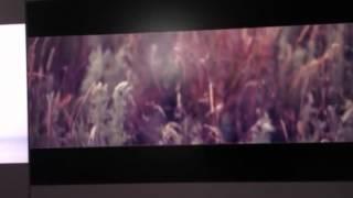 Монтаж клипа PLC - Последний день