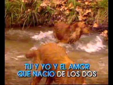 Miguel Rios - El rio karaoke
