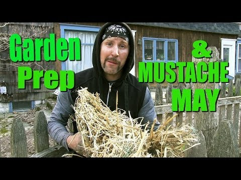 Gardening Tips Peat Moss - The Vegan Zombie