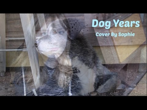 Dog Years Maggie Rogers Cover By Sophie Beaton