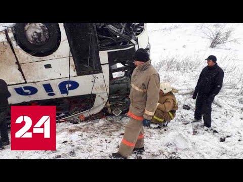 ДТП с автобусами под Тамбовом: прокуратура проводит проверку - Россия 24