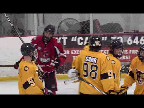 Hockey Tournament Thanksgiving Day. Golden Wolves - Palm Beach Hawks U18, Game 4.  12/01/2019