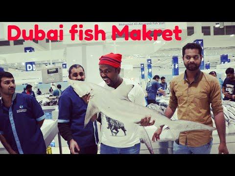 Dubai Fish Market | Waterfront Market
