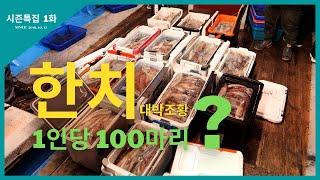 [시즌특집] 1화 한치 대박조황