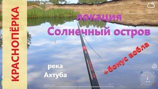 Русская рыбалка 4 река Ахтуба Красноперка в устье протоки