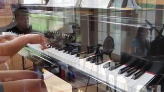 Weight of the World - NieR: Automata (viola/piano) ft. Animevivi