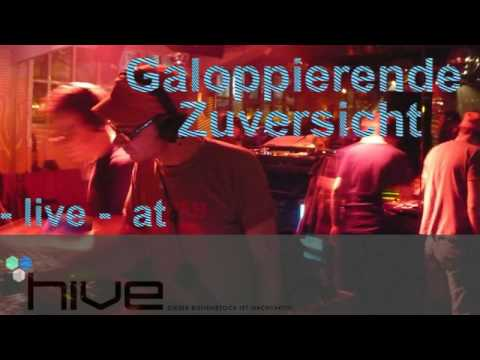 Galoppierende Zuversicht @ Hive part2