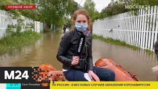Фото Ливни затопили подмосковные дачные участки - Москва 24