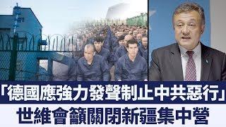 世維會籲德國強力發聲:要求中共關閉新疆集中營 新唐人亞太電視 20191101