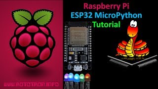 ESP32 MicroPython Tutorial with Raspberry Pi