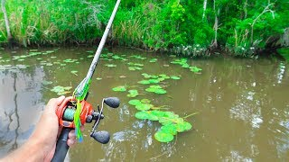 FROG Fishing for GIANT Bass in HIDDEN CREEKS