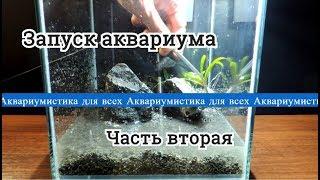 Запуск аквариума 10л. Часть вторая. Грунт. Камни. Растения. Вода.