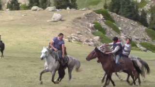 Козлодрание  - РЕАЛЬНОСТЬ.Казахстан