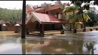 Kerala floods:  Flooded areas at Chengannur on Sunday